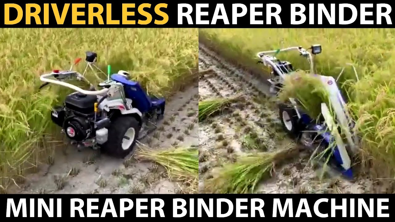 Driverless REAPER BINDER MACHINE Harvesting Paddy / Rice | Automatic Mini Reaper Binder Machine