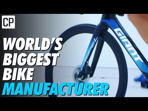 How Giant Became The World's Biggest Bike Company