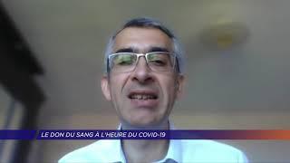 Yvelines | Le don du sang à l'heure du COVID-19