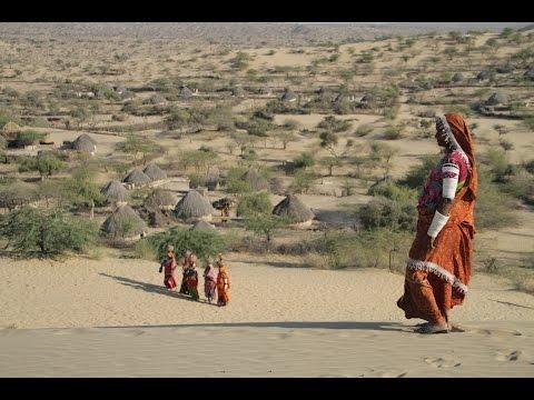 Thar Sindh Region - Water Project