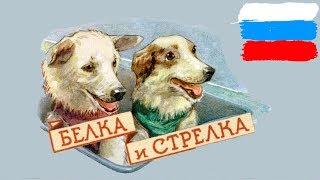 Самые известные животные в истории России