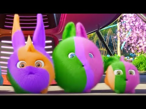 Sunny Bunnies | We Are The Wrong Colors! | COMPILATION | Cartoons for Children | WildBrain