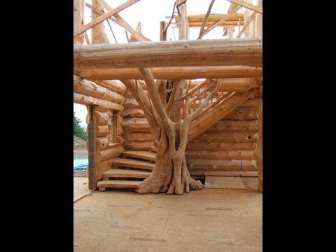 Spectacular ~ Log Stairs with a Tree!