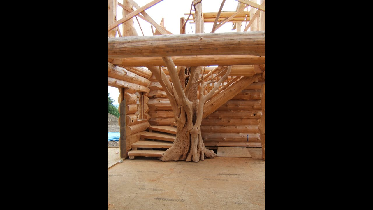 Spectacular log stairs with a tree youtube for What to make with tree logs
