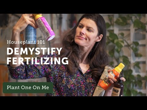 houseplant-101:-complete-guide-to-fertilizing-houseplants-—-ep-122