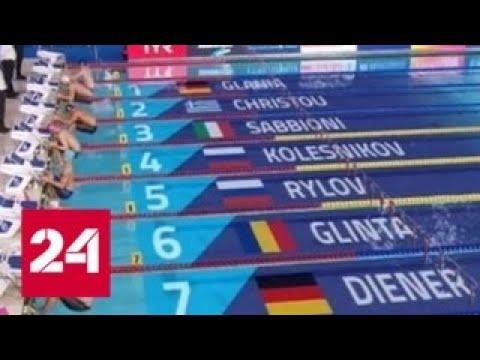 На чемпионате мира по водным видам спорта первые медали разыграют прыгуны в воду - Россия 24