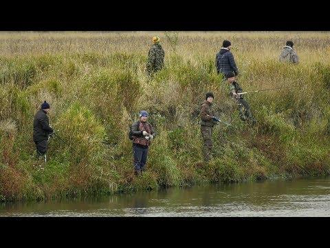 В Каргапольском районе состоялся 19-й открытый турнир по ловле хищной рыбы