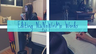 EDITING MY NANOWRIMO PROJECT - Part 1