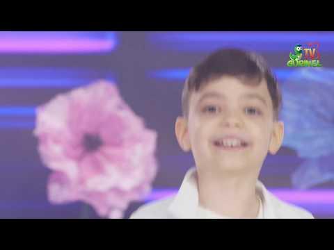 Vladut Tornea (DoReMi-Show) – Flori de ziua ta – Cantece pentru copii in limba romana