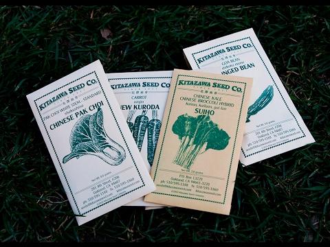 Seed Order From Kitazawa Seed Company