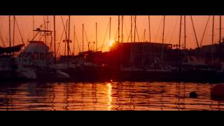 Dark Tide - Trailer