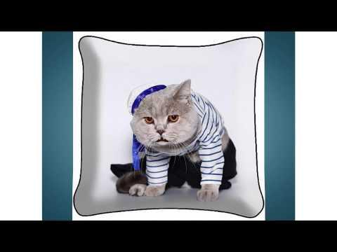 Шуточное поздравление с Днем Рождения Светлане от кота Матроскина