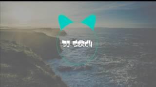 Ella quiere hmm haa hmm (Dj Serch Remix)