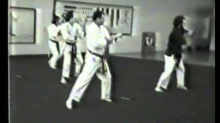 Naihanchi Nidan   Bill & Dan 1981
