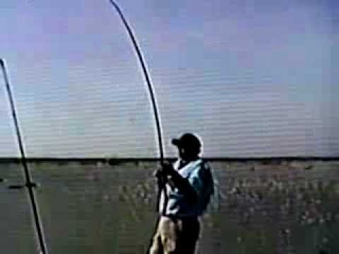 Surf fishing in the fall in va youtube for Surf fishing virginia beach