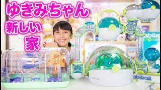 ゆきみちゃんの新しい家がヨーロッパから届きました! thumbnail