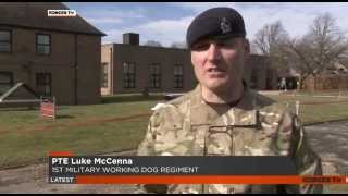 Army Looking For Its First Reservist Dog Handlers - 09.03.15