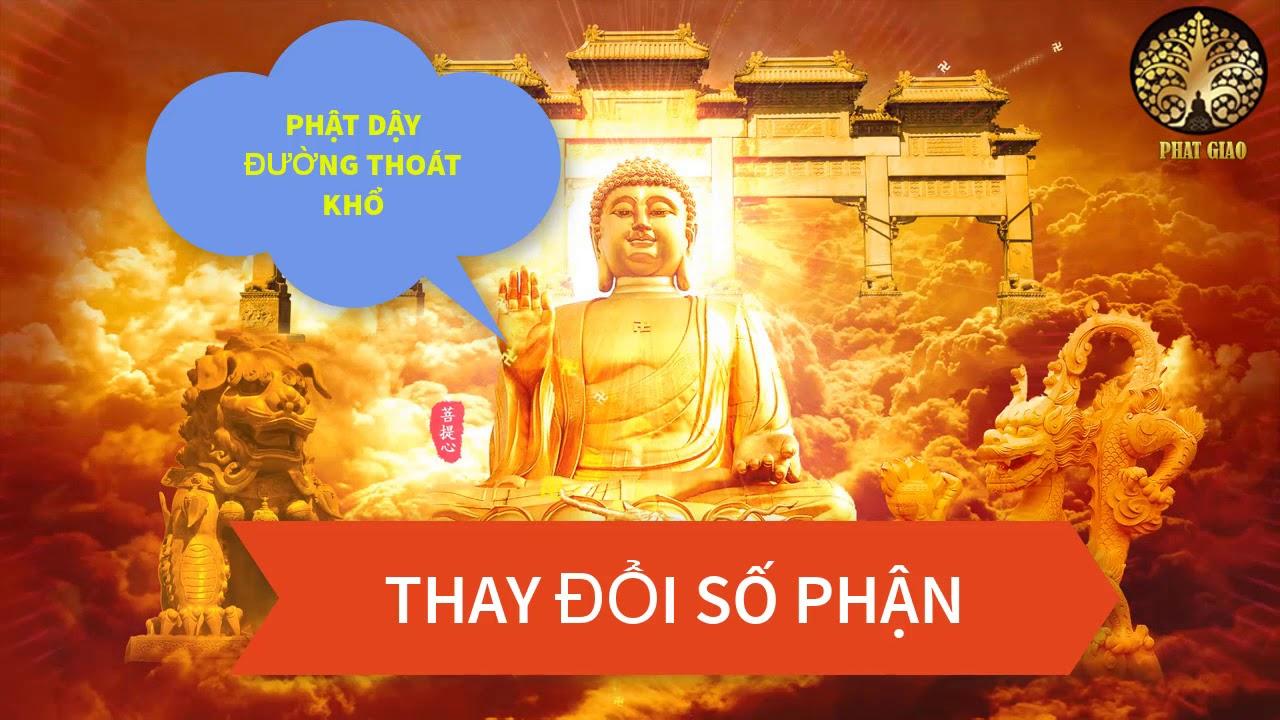 Phật tử tại gia học Phật  Nghe để giác ngộ bớt khổ đâu Pháp sư tịnh không