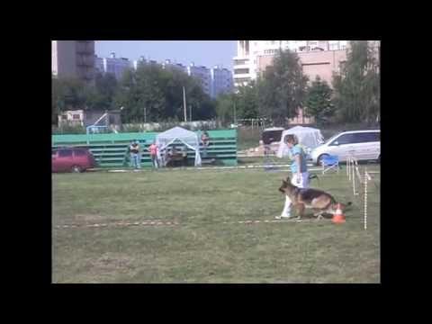 ТБХ Окки Рязань