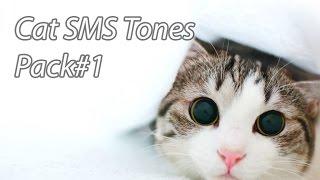 Funny Ringtones - Cat SMS Tones