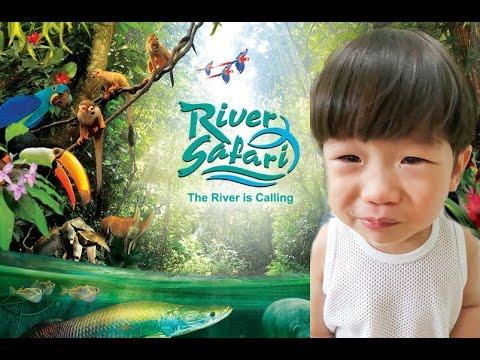 River Safari Singapore Complete Walk through with Elijah - 20minutes