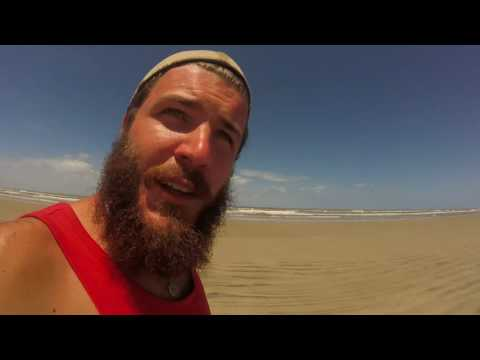 Logging the stranded marine life in Uruguay - #GotBusyLiving