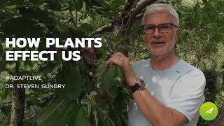 Baixar How Plants Effect Us — Dr. Steven Gundry