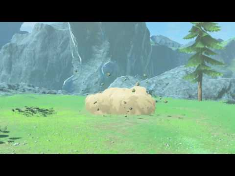 How to perform the ceremony to complete Ceremonial Song quest - Breath of the Wild