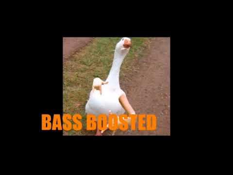 Denn Ich dance mit de Gänse 10 Hours (Bass Boosted)