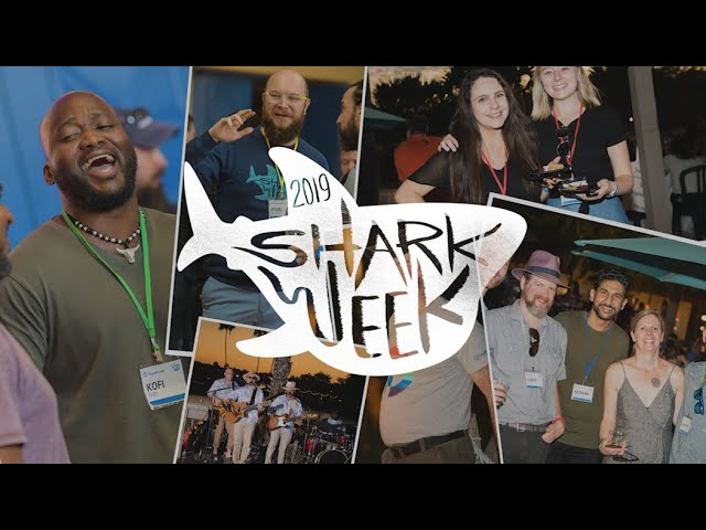 Shark Week 2019 Recap