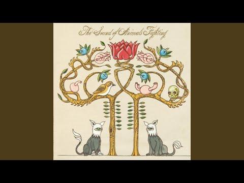 The Heretic (Evol Intent Remix)