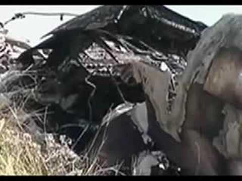 Travis Barker Plane Crash UPDATE! - YouTube