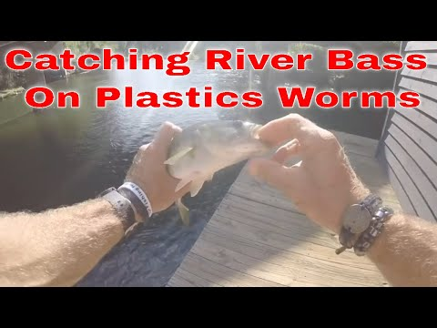 Catching River Bass from Boat House GA