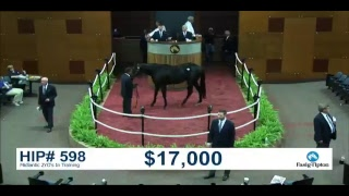The Fasig-Tipton Midlantic 2YO's In Training Sale - Day 2