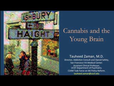 """Cannabis and the Young Brain,"" Tauheed Zaman, M.D."