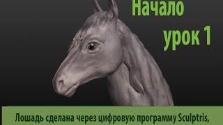 Sculptris - скульптура головы лошади урок 1
