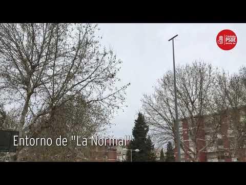 El PSOE exhibe la falta de poda en el entorno de la Normal