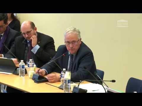Commission des affaires européennes : directive sur le changement d'heure