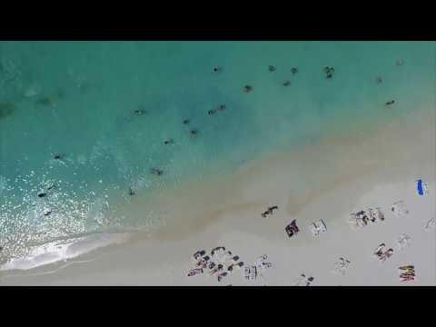 Hotel Riu Palace Antillas All Inclusive Adults Only - Palm Beach - Aruba - RIU Hotels & Resorts