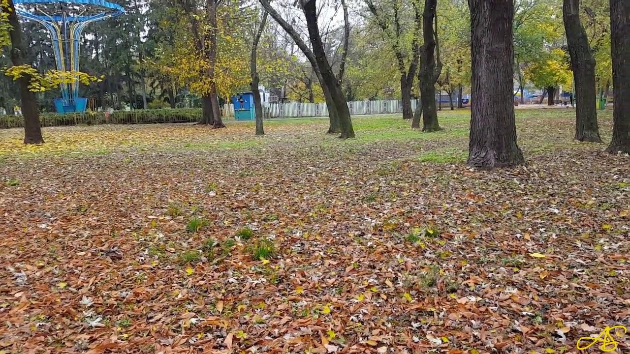 Осень в Приднепровском парке - YouTube