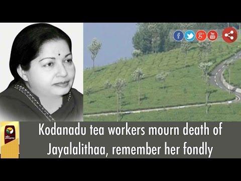 Kodanadu tea workers mourn death of Jayalalithaa, remember her fondly