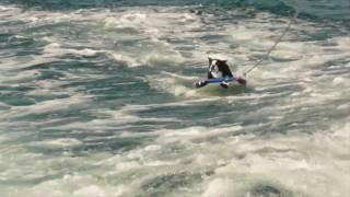 Buddy Boston Terrier dog - Water Skiing