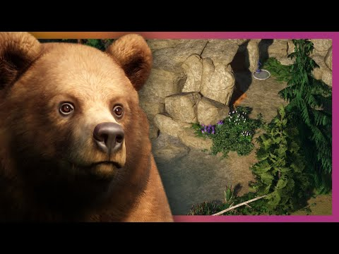 🐻 Grizzly Bear Community Challenge | Planet Zoo Franchise Mode