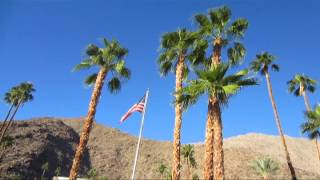 Video PALM TREES AND 75 DEGREES download MP3, 3GP, MP4, WEBM, AVI, FLV Januari 2018