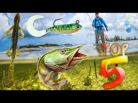 8 Best Cheap Fishing Accessories and Fish Baits You Should Have (UNDER $5)