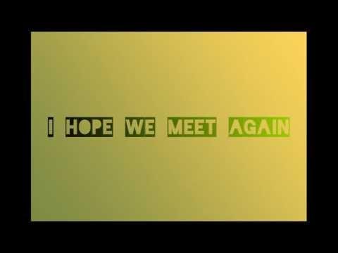 Hope we meet again - Pitbull Ft. Chris Brown - lyrics video