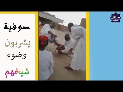 شاهد وتعجب من جهل الصوفية يشربون موية وضوء الشيخ thumbnail