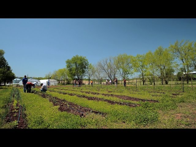 MTSU True Blue Preview: Plant and Soil Science