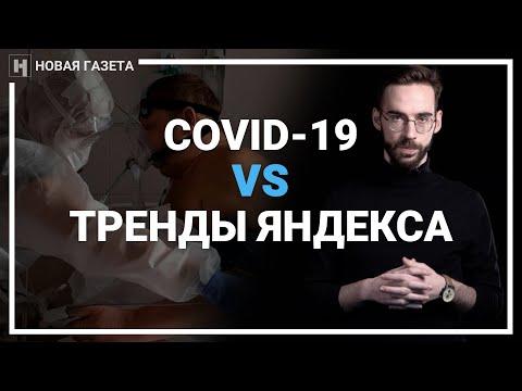 Почему статистика РФ по COVID-19 недостоверна. Объясняем на примере трендов Яндекса