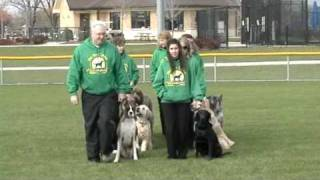 The Fine Canine Dog Obedience Drill Team